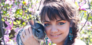 Do Chinchillas Like To Be Held?