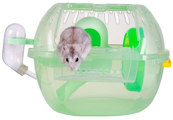 dwarf hamster travel cage