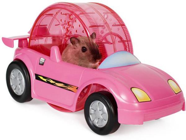 hamster wheel car
