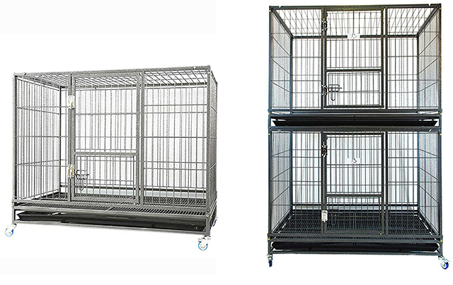 Greatest Best Indoor Guinea Pig Cage Models Reviewed - With Tips For Choosing SC49