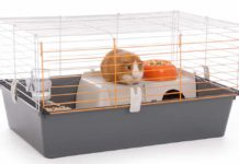 best indoor guinea pig cages