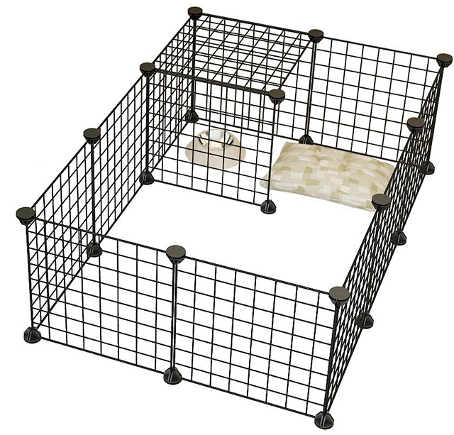 best cage for indoor guinea pigs