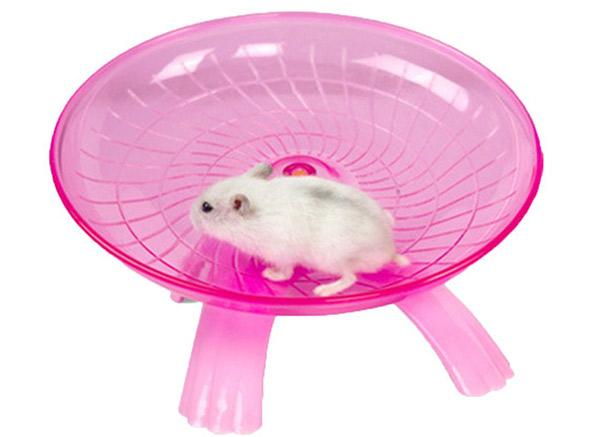saucer hamster wheel