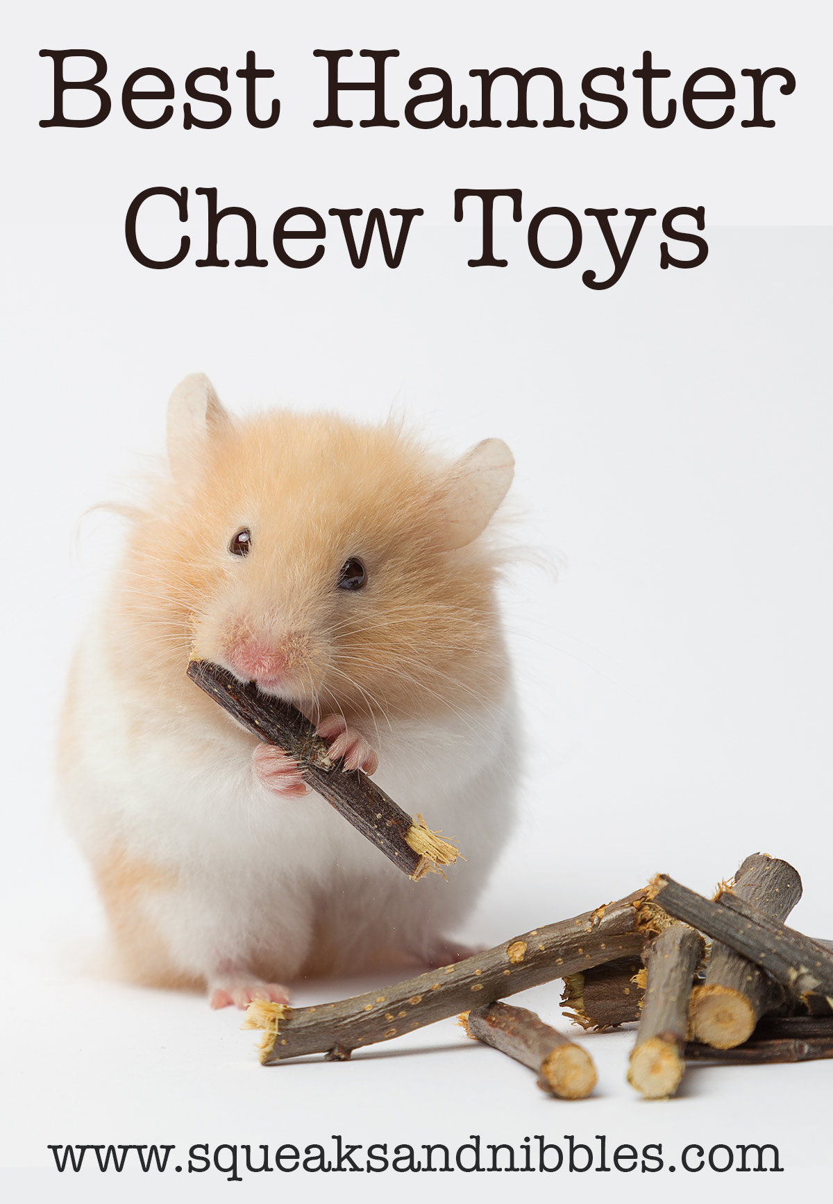 best hamster chew toys