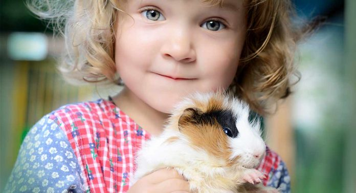 Best Pets for Kids - Top 10 Contenders
