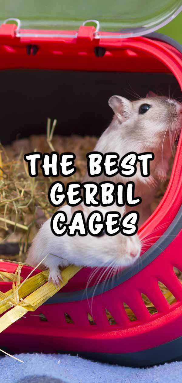 best gerbil cages