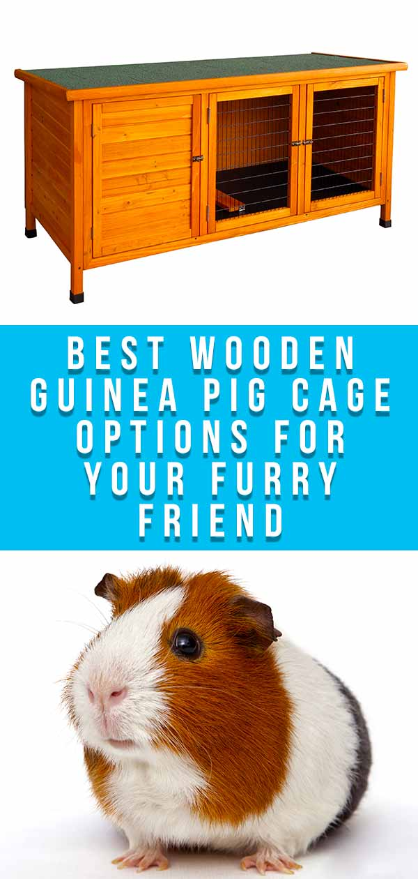Best Wooden Guinea Pig Cage Options For Your Furry Friend SN tall