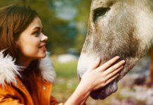donkey names