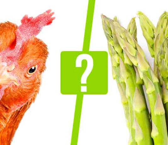 can chickens eat asparagus